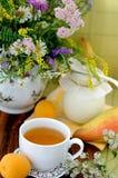 Fiori del campo e tè di camomilla (priorità bassa) Immagini Stock