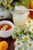 Fiori del campo e tè di camomilla (priorità bassa) Immagine Stock
