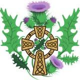 Fiori del cardo selvatico incorniciati croce celtica stilizzata Fotografia Stock