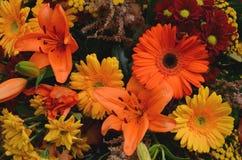 Fiori del crisantemo, del giglio e della gerbera Immagine Stock Libera da Diritti