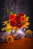 Fiori del crisantemo di autunno Immagine Stock