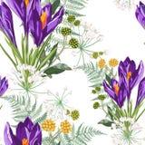 Fiori del croco e modello viola floreali senza cuciture della felce su un fondo bianco illustrazione vettoriale