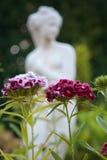 fiori del figurine Fotografie Stock