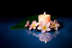 Fiori del frangipani e della candela Immagine Stock Libera da Diritti