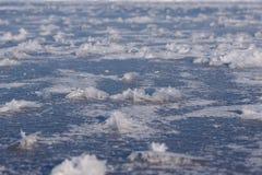 Fiori del gelo sul lago congelato Immagine Stock Libera da Diritti
