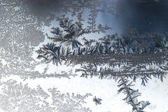 Fiori del ghiaccio su vetro fotografia stock libera da diritti