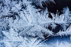 Fiori del ghiaccio su vetro Immagini Stock Libere da Diritti