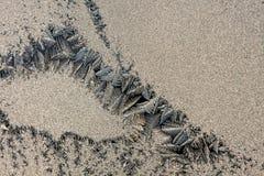 Fiori del ghiaccio su vetro Fotografia Stock
