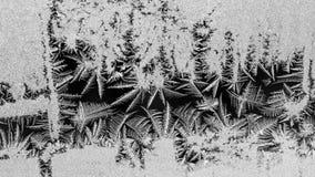Fiori del ghiaccio su vetro Immagine Stock