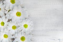 Fiori del giardino sopra il fondo di legno dipinto della tavola contesto con lo spazio della copia Bei fiori su fondo di legno Immagine Stock