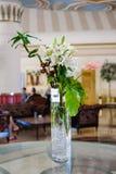 Fiori del giglio bianco in un vaso Fotografia Stock