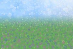 Fiori del prato del cielo blu della priorità bassa della sorgente Fotografie Stock