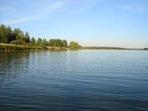 Fiori del prato nella superficie della foresta di estate del fiume Immagine Stock
