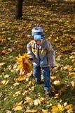 fiori del ragazzo del mazzo di autunno Immagini Stock Libere da Diritti