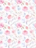 Fiori dell'acquerello Reticolo senza giunte Rose sveglie Immagini Stock