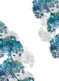 Fiori dell'acquerello su fondo bianco Immagine Stock Libera da Diritti