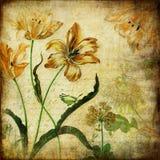 fiori dell'annata illustrazione di stock