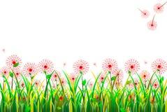 Fiori dell'erba Immagini Stock Libere da Diritti