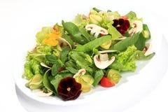 Fiori dell'insalata fotografie stock