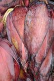 Fiori della banana da vendere Fotografia Stock Libera da Diritti