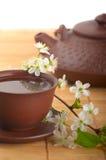 Fiori della ciliegia e del tè Immagini Stock Libere da Diritti