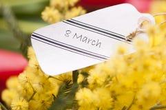 Fiori della mimosa e 8 marzo della cartolina Immagini Stock Libere da Diritti