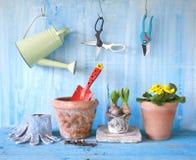 Fiori della primavera e strumenti di giardinaggio Fotografia Stock Libera da Diritti