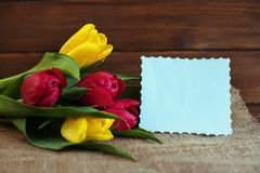 Fiori della primavera su un fondo di legno Concetto della festa, nascita Immagini Stock Libere da Diritti