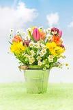 Fiori della primavera in un secchio Fotografia Stock