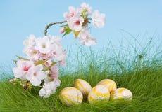 Fiori della sorgente ed uova di Pasqua Immagine Stock