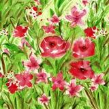 fiori delle pitture dell'impressione royalty illustrazione gratis