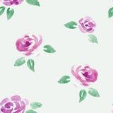 Fiori delle rose dell'acquerello senza cuciture Immagine Stock