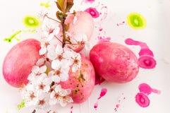 Fiori delle uova di Pasqua e del fiore di ciliegia Immagini Stock Libere da Diritti