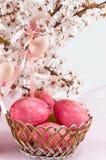 Fiori delle uova di Pasqua e del fiore di ciliegia Fotografia Stock