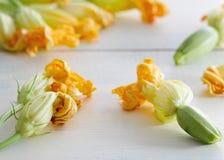 Fiori dello zucchino su fondo di legno Fotografia Stock Libera da Diritti