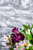 Fiori di Alstroemeria su fondo di legno Fotografia Stock Libera da Diritti
