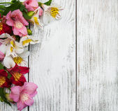 Fiori di Alstroemeria su una tavola Fotografie Stock