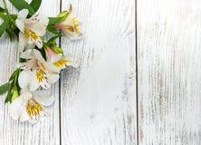 Fiori di Alstroemeria su una tavola Fotografia Stock Libera da Diritti
