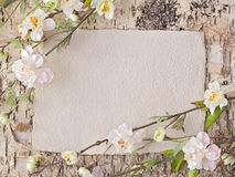 Fiori di ciliegia e nota in bianco immagini stock libere da diritti