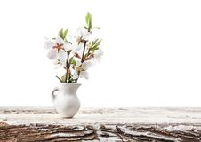Fiori di ciliegia in vaso bianco immagini stock libere da diritti