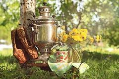 Fiori di estate della samovar Fotografia Stock