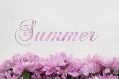 Fiori di estate - testo con i fiori illustrazione di stock
