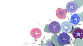 Fiori di fioritura e germoglianti di ipomea con le foglie illustrazione vettoriale