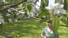 Fiori di fiuto della bambina su un albero e spaventati dalle api che volano di fianco video d archivio