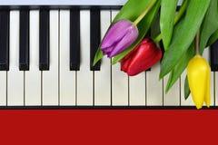 Fiori di giorno di biglietti di S. Valentino sulla tastiera di piano Fotografie Stock Libere da Diritti