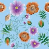 Fiori di kosmeya e del papavero illustrazione vettoriale