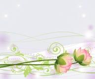 Fiori di loto rosa astratti, gigli, vettore Fotografia Stock Libera da Diritti
