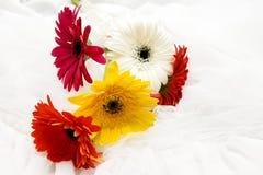 Fiori di nozze Fotografie Stock