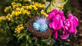Fiori di Pasqua con le uova Immagini Stock Libere da Diritti