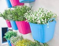 Fiori di plastica con il vaso di plastica variopinto Fotografie Stock